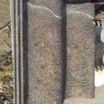 beton pan (2)